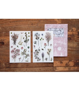 LCN - Dried Flower Print-on Stickers