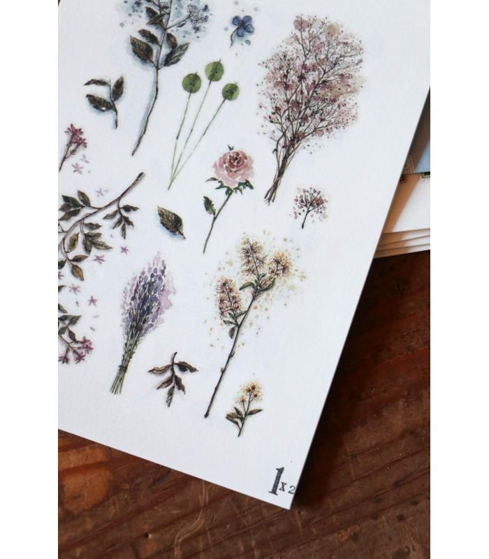 LCN - Dried Flower Print-on Stickers