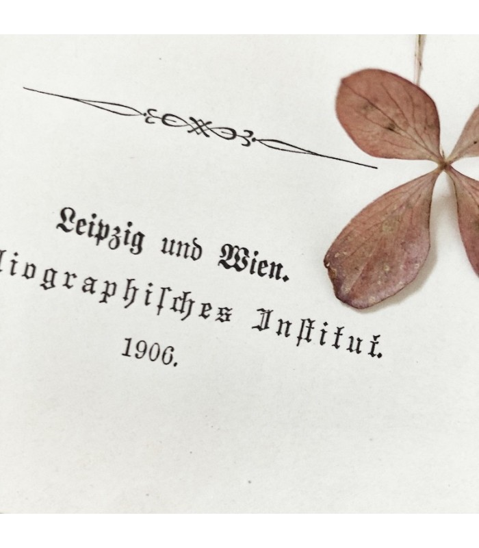 German Lexicon Paper Bundle