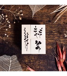 OHS - Mini Botanical -leimasinsetti