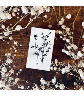 OHS - Botanical No.6 -leimaisn