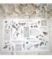 PG Curiouser and Curiouser 1. Cut & Paste Sticker Sheet