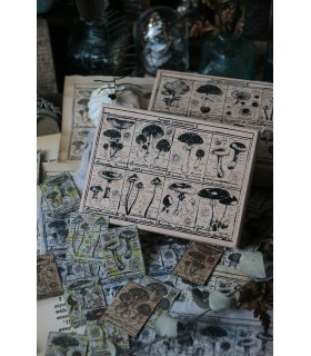 LCN -Fungus Notecard Rubber Stamps I -leimasin