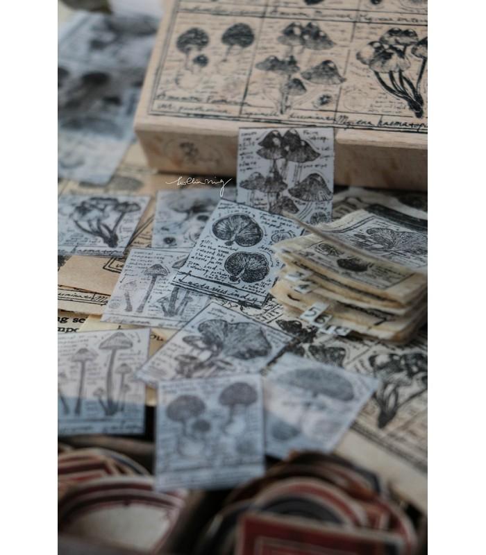 LCN - Fungus Notecard Rubber Stamps II -leimasin