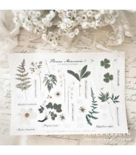 PG Flower Memories 1. Cut & Paste -tarra-arkki